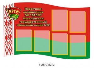 Стенд БРСМ в форме влага РБ